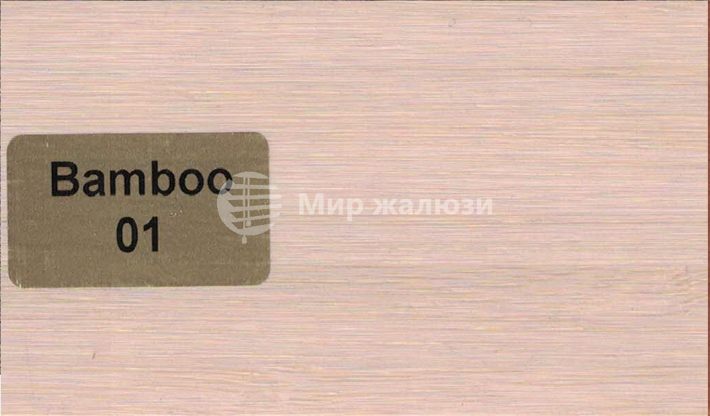Bamboo-01