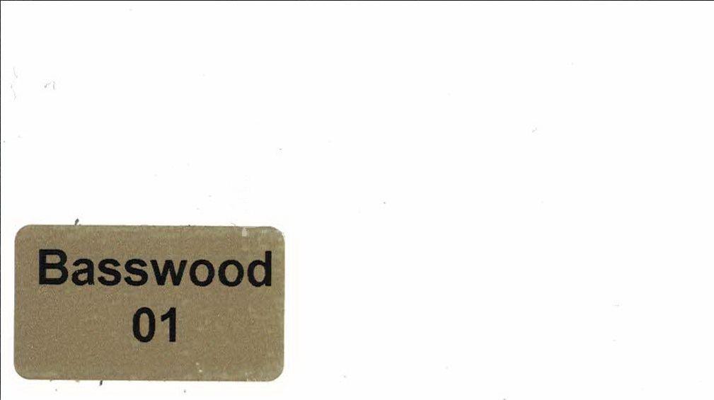 Basswood-01