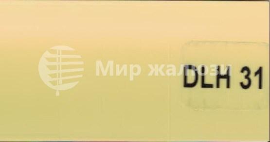 DLH-31