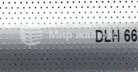 DLH-66